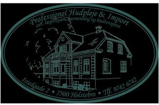 Professione lHudpleje logoet